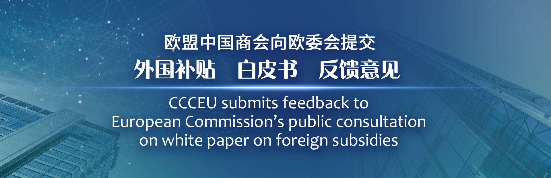 CCCEU responds to EC white paper