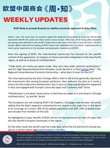 Weekly Updates November 20