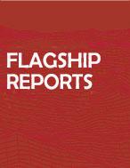 flagship reports.jpg